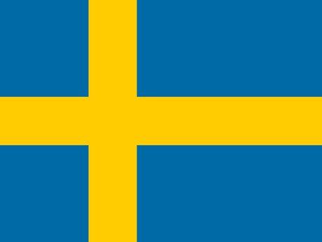 30 Min Session in Beginning Swedish
