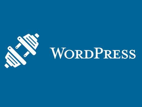 3 Plugin WordPress Optimization