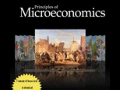 30-minute Microeconomics HW Help