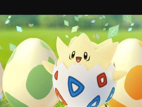 Pokémon Go hunting buddy