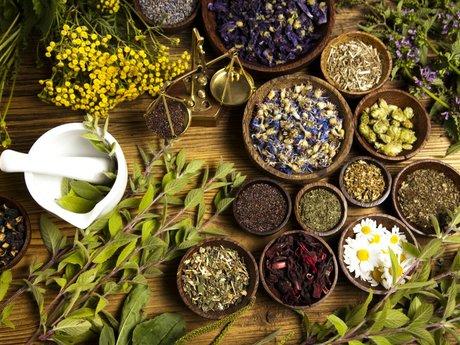 Health Guru Healing Sessions