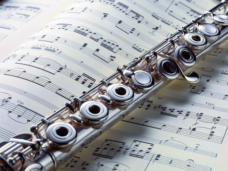 Classical Flute or Piccolo Lessons