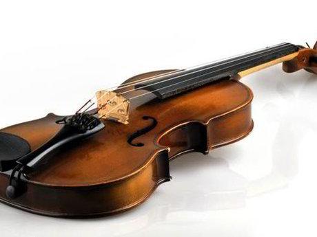 Violin or Viola Lessons