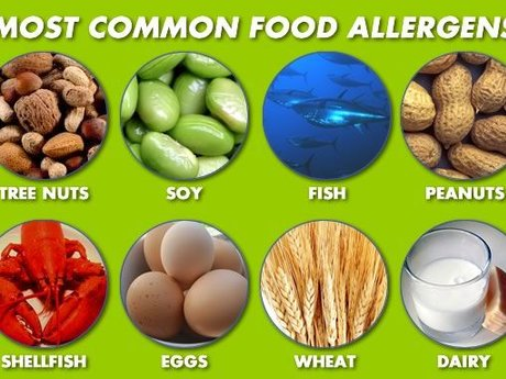 Food Allergy Recipe Converter