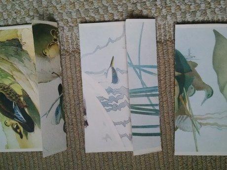 3 unique, self sealing envelopes