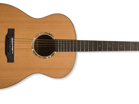Teach you a song on the guitar