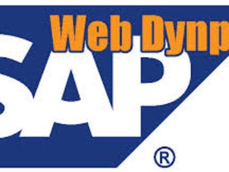 SAP Webdynpro Consultant