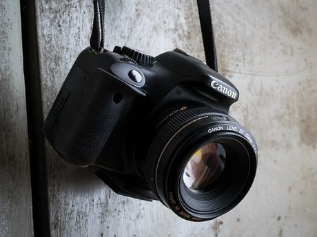 Photography Mini-Session