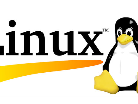 Linux is the Future.  Learn it