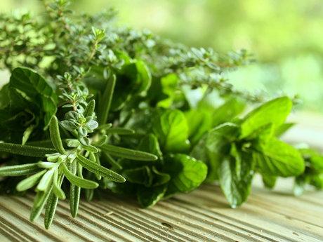 15 Min - Herbal Health Consultation