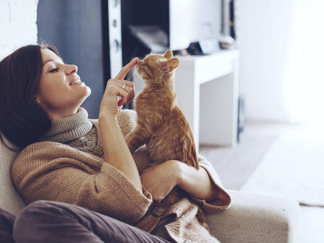 Pet sitting and Animal Care