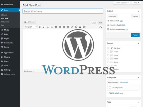 WordPress Tutor (30 minutes)
