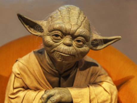 Custom Yoda voice over