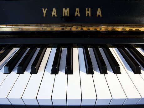 Learn to read/play music on Piano