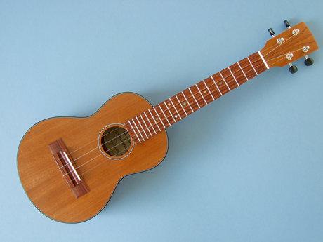 30 minute ukulele lesson