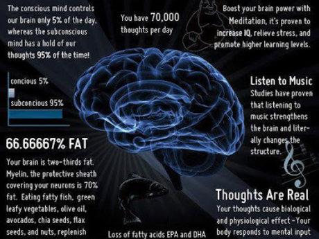 30 Min Brain Balancing Consultation