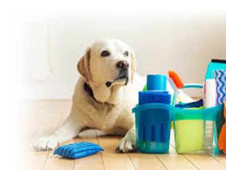 Housekeeping/cleaning