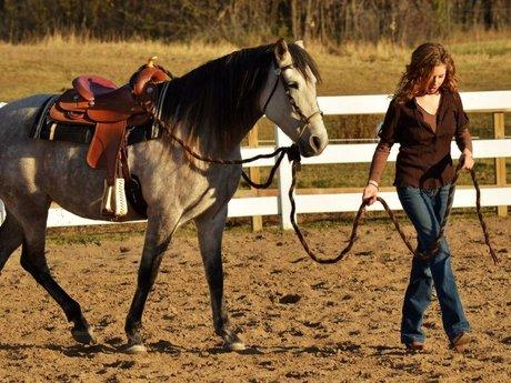Horseback riding lessons/training