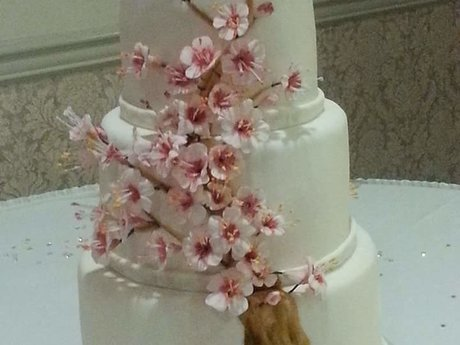 Tiered wedding or party cake
