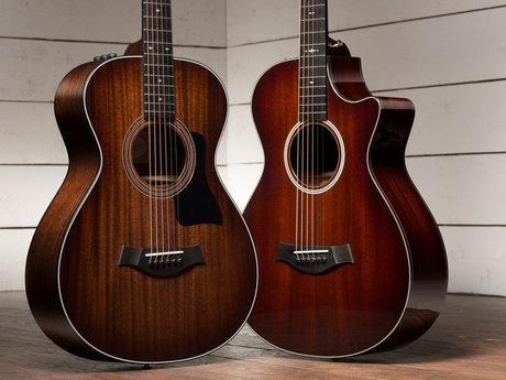Beginner's Guitar Lessons