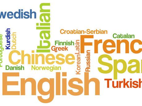spanish tutor and translator