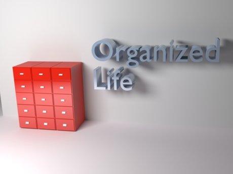 Life organization