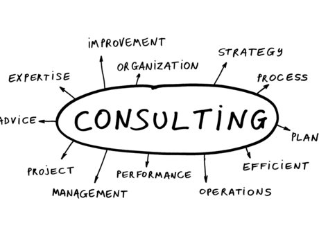 Professional IT Consulting