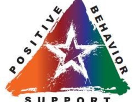 Intro To Positive Behaviour Support