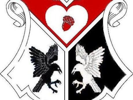 (SCA) Heraldic Consultation