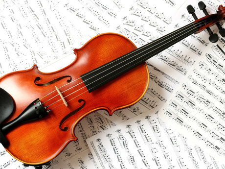 The Basics of Violin