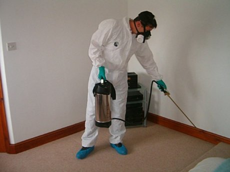 Household Pest Control