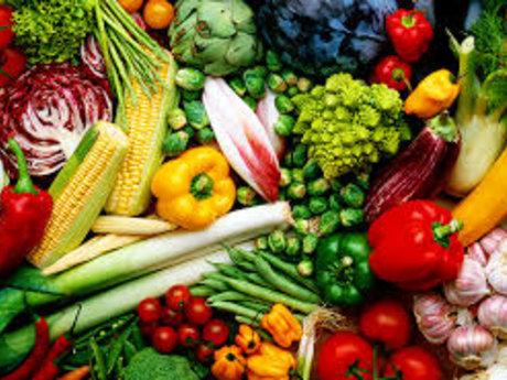 Rincon Puerto Rico Organic Food