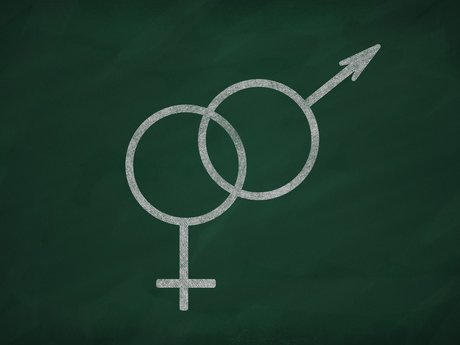 Sex/Gender/Sexuality Consult