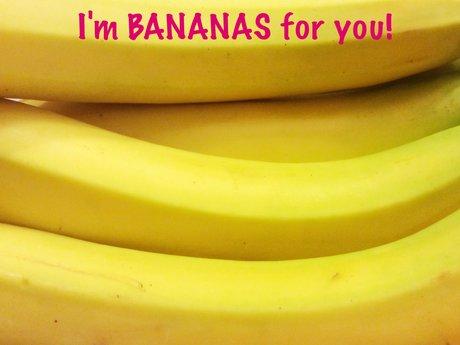 Bananas magnet postcard