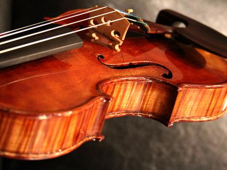 30 min: violin lesson/reading music