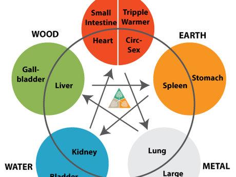 TCM/OMT Elemental Theory