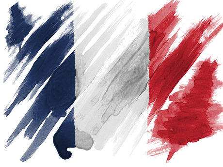 French Conversation 30mins