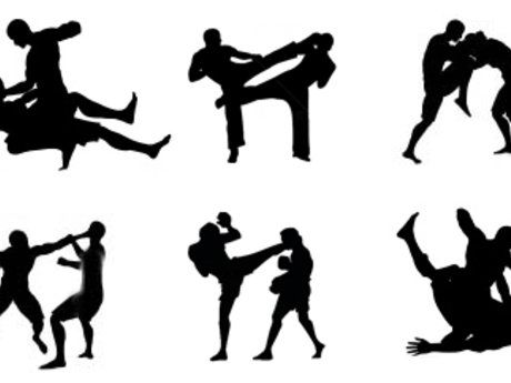 MMA/Boxing/kickboxing lessons