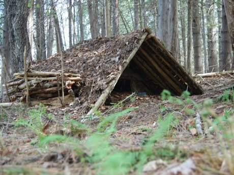 Basic Wilderness Survival Training