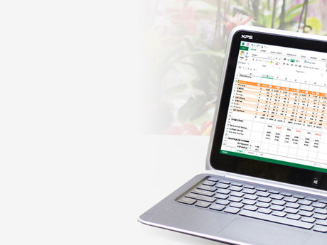 Custom Excel Workbooks