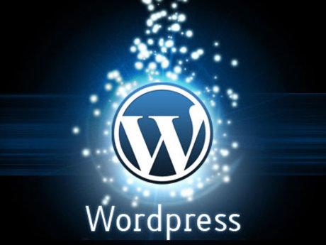 Wordpress Design/Marketing Support