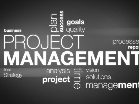 IT Project Management Mentoring