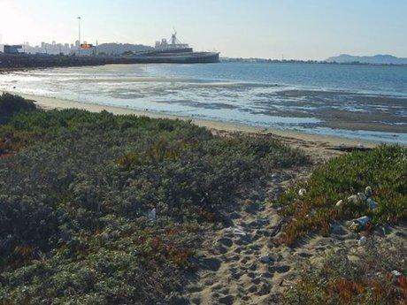 5 lb Trash Cleanup On Beach