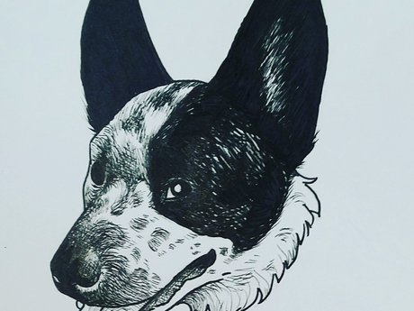 "4""x6"" Pet portrait"