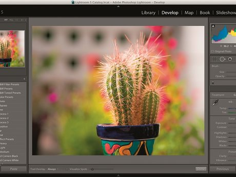 Photoshop and Video Edting