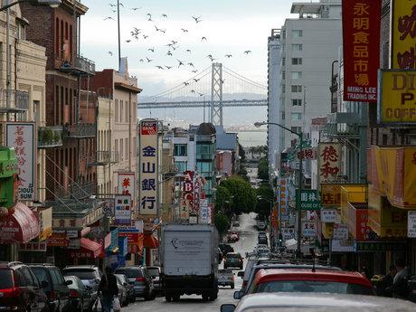 Local San Francisco Culture Guide
