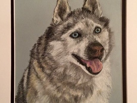 One pastel pet portrait