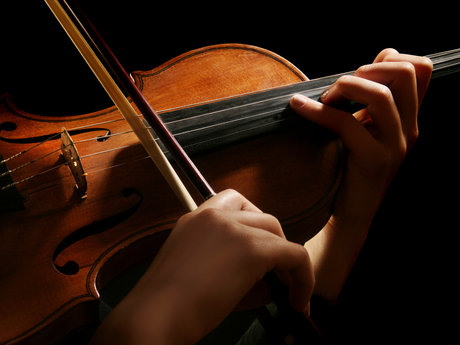 Violin lessons (beginner)