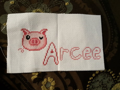 Cross stitching.  Lesson or piece