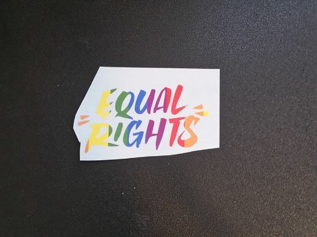 Equal Rights Decal